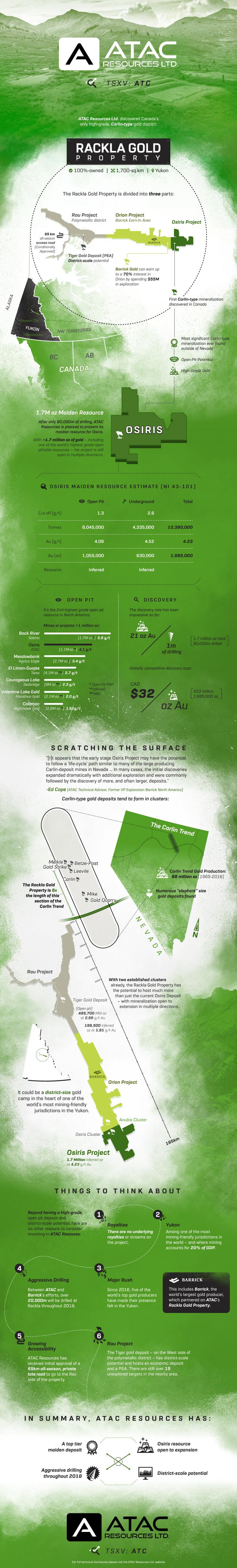 Visual Capitalist Infographic